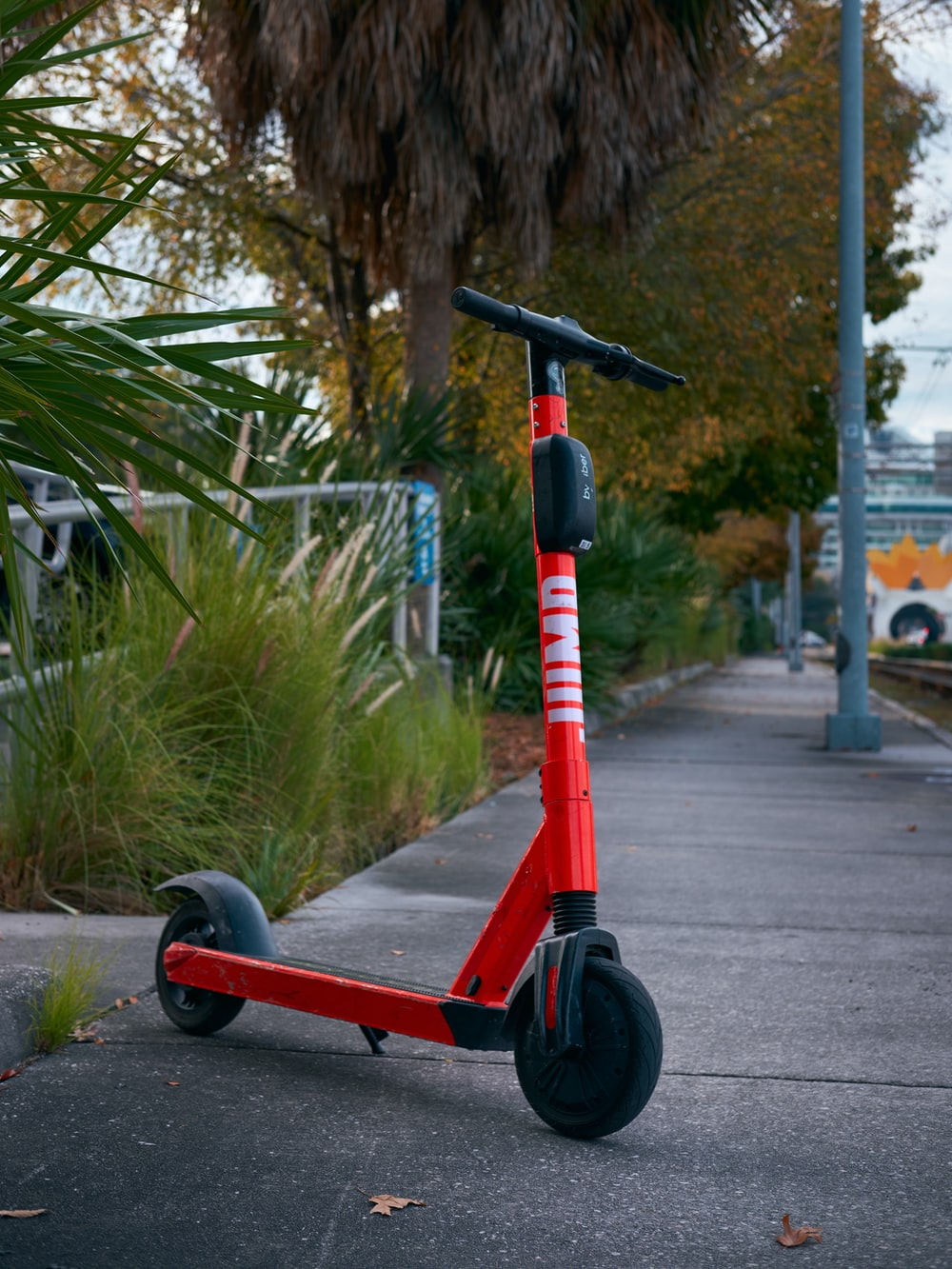 red and black kick scooter on gray concrete road during daytime