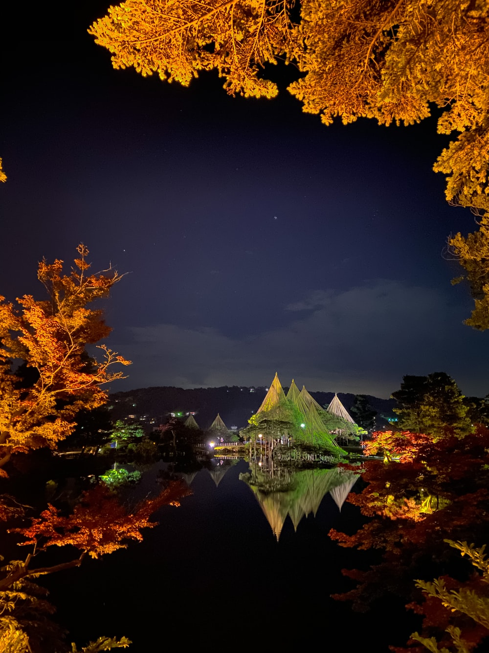 green and brown trees near body of water during night time