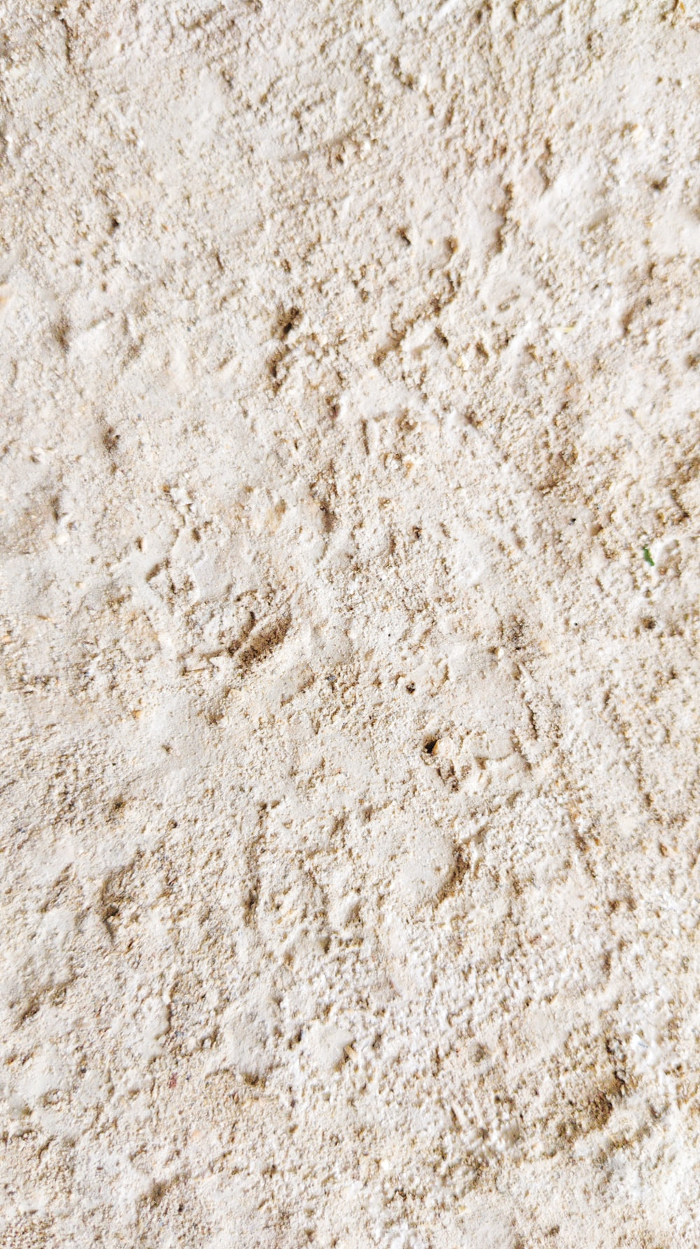 white and brown concrete floor