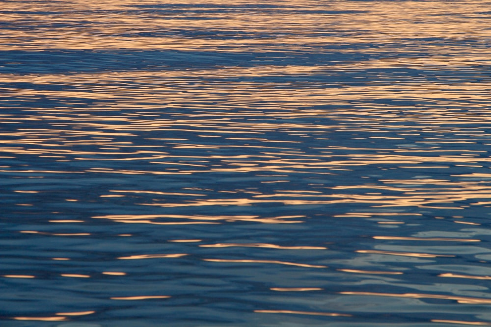 blue and yellow body of water