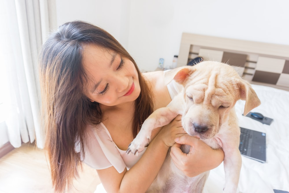 woman in white tank top hugging brown and white short coated dog