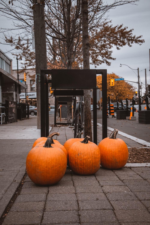 orange pumpkins on gray concrete road during daytime