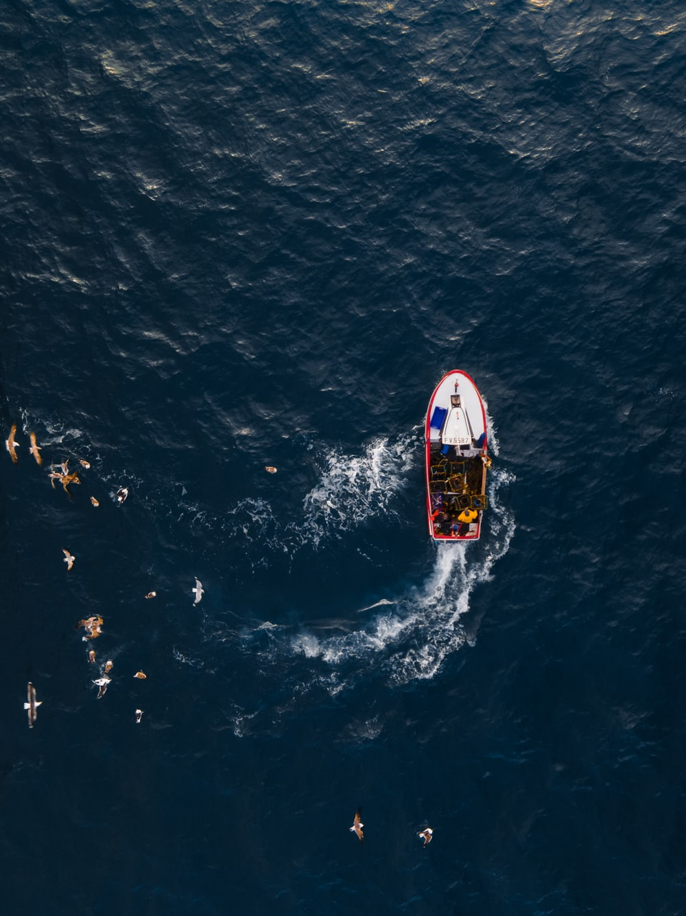 red and white boat on blue sea during daytime