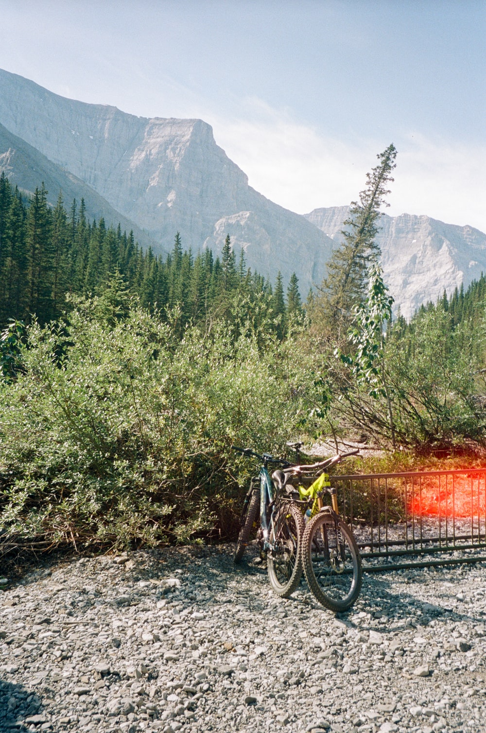 black and orange mountain bike on forest during daytime