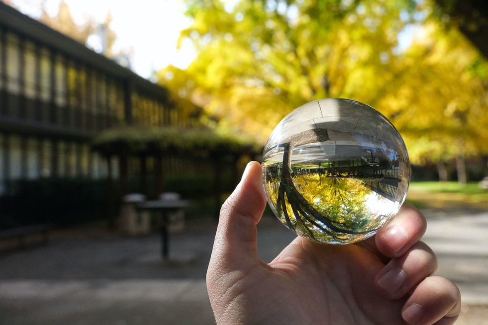person holding clear glass ball