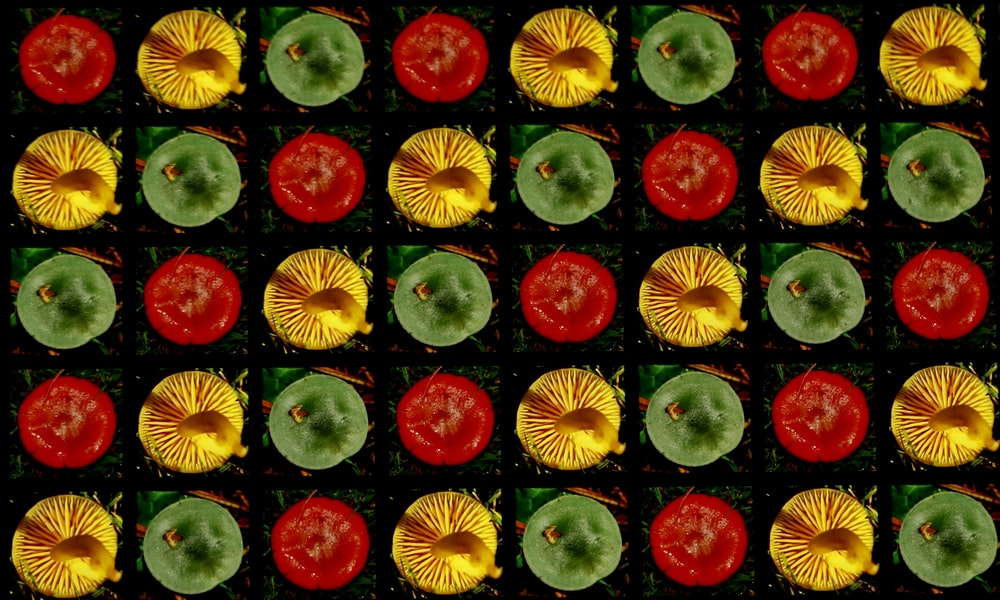 red yellow and green fruit