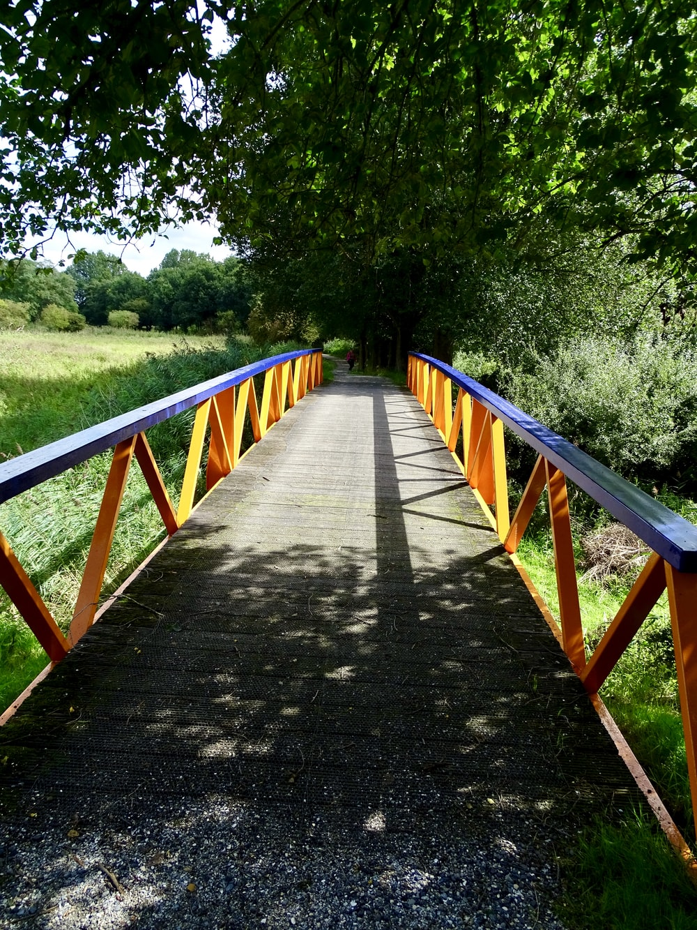 brown wooden bridge in between green trees during daytime