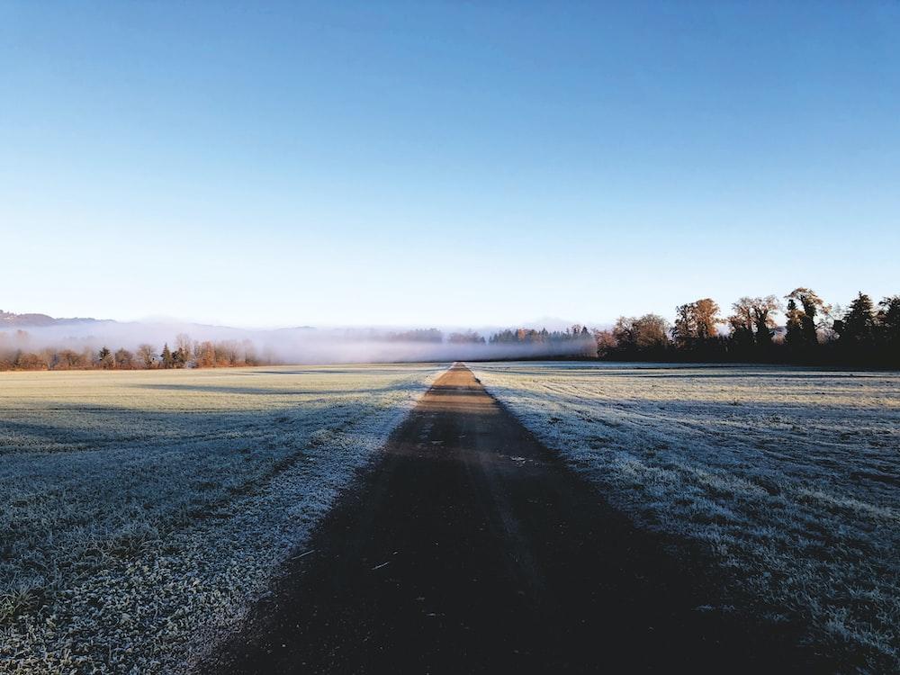 gray asphalt road between green grass field under blue sky during daytime