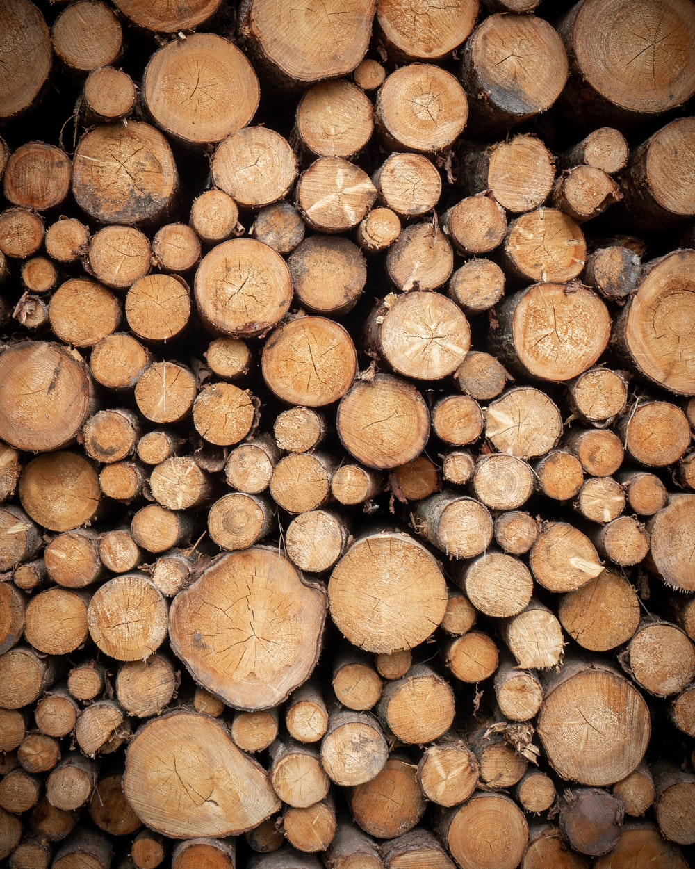 pile of brown wood logs