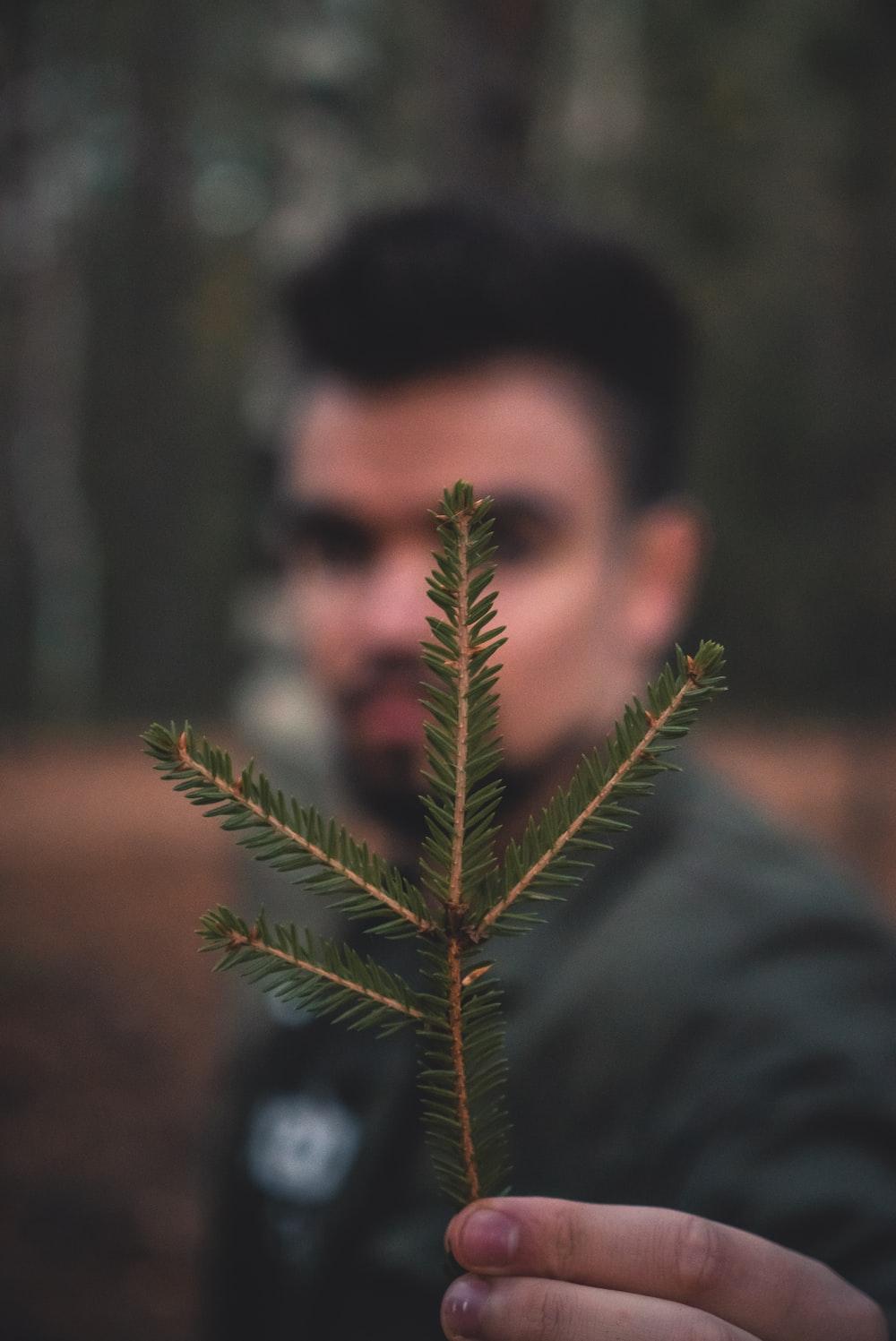 man in gray hoodie holding green leaf