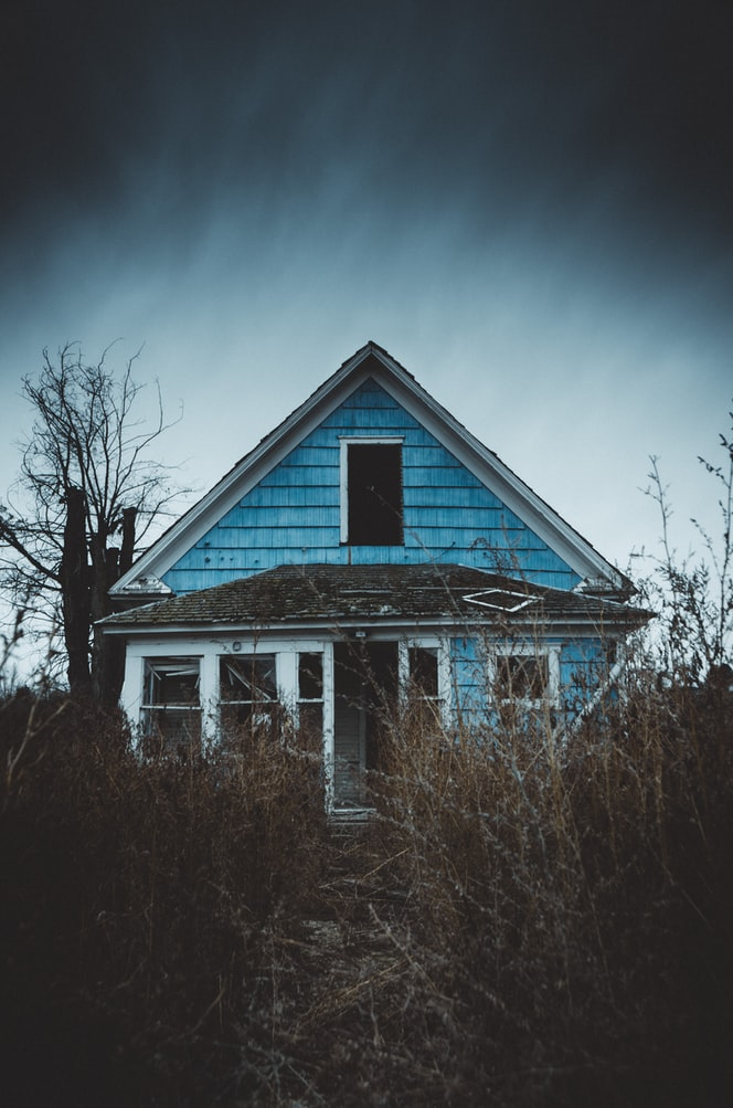 A blue abandoned house covered in thick vegetation