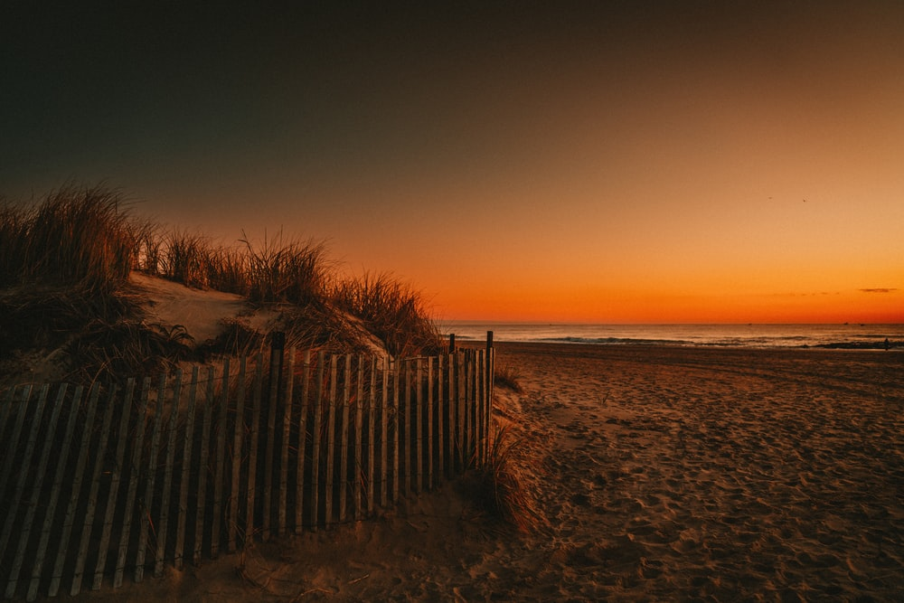 brown wooden fence on brown sand near body of water during sunset