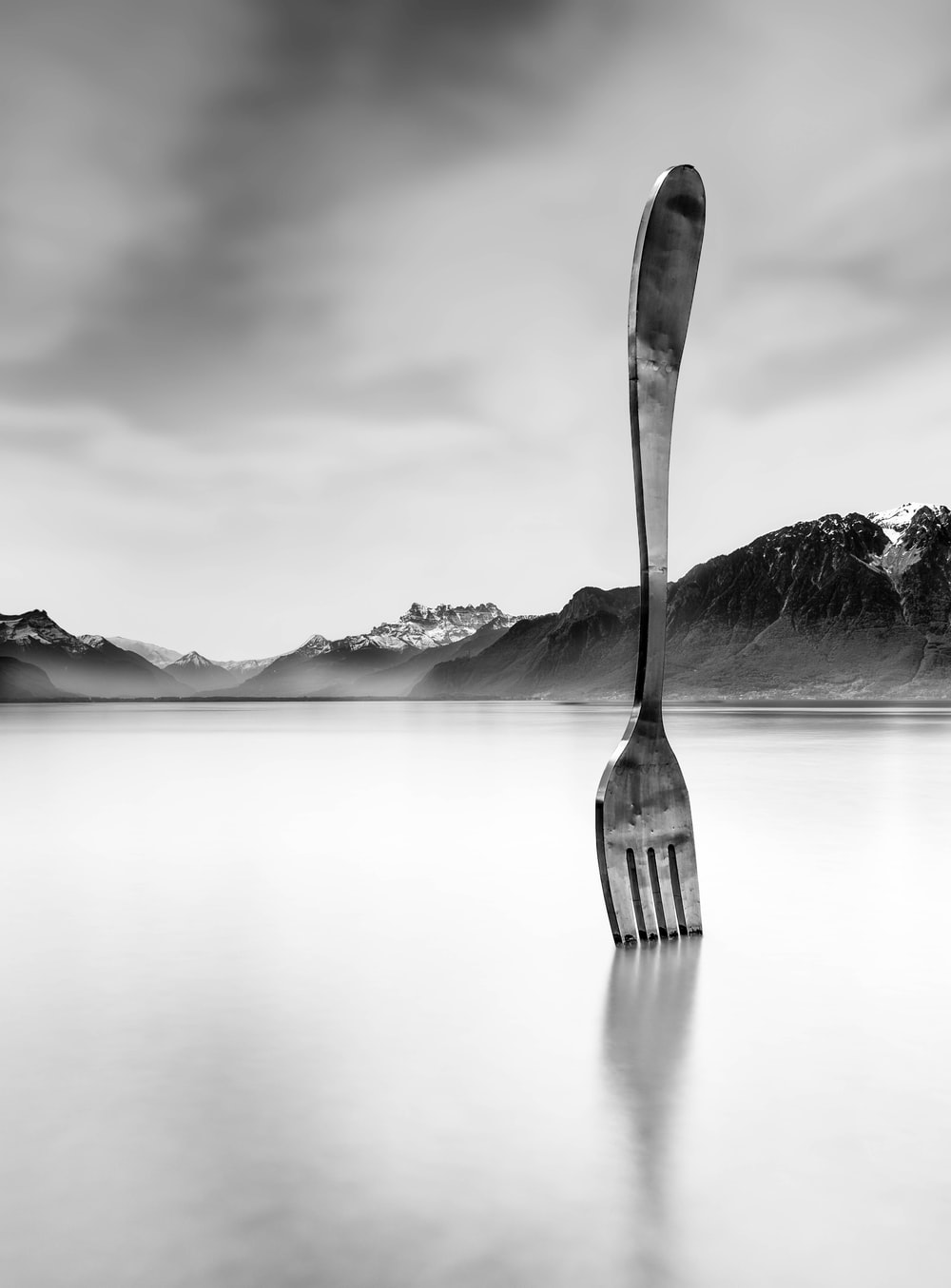 grayscale photo of a fork on a lake