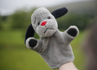 person holding white and black bear plush toy
