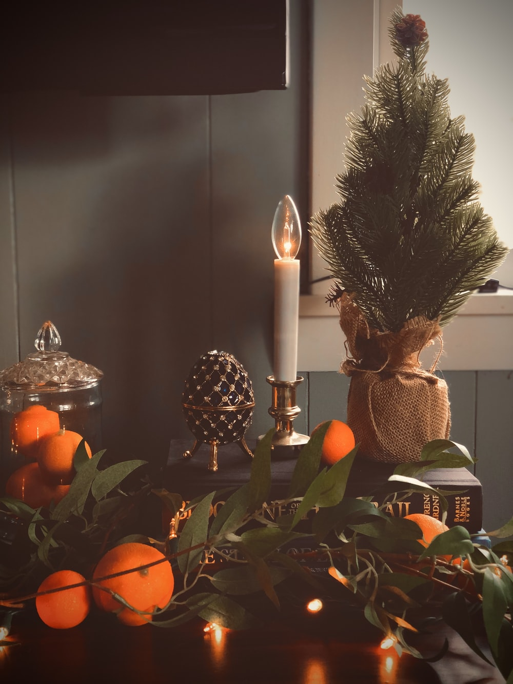 green and brown pine tree with lighted candle