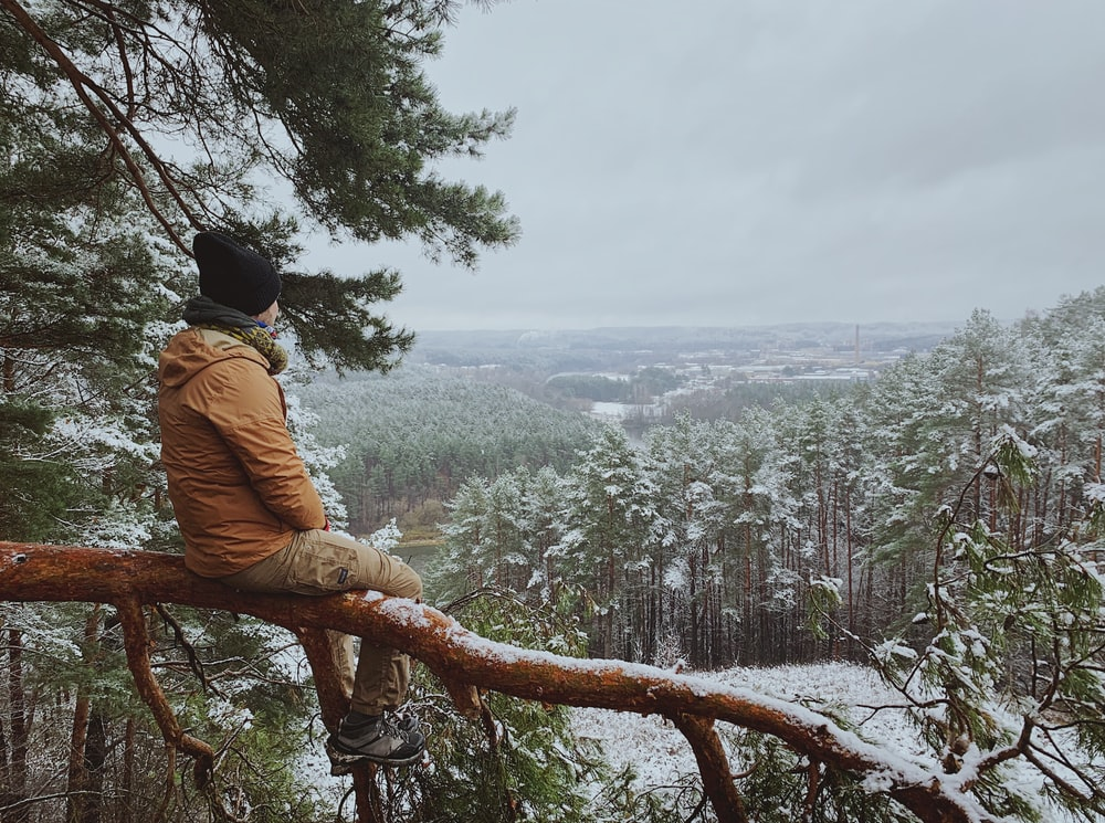 man in brown jacket sitting on tree branch during daytime