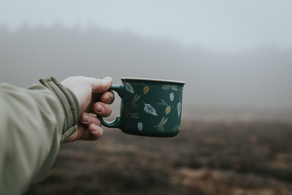 person holding blue and white ceramic mug