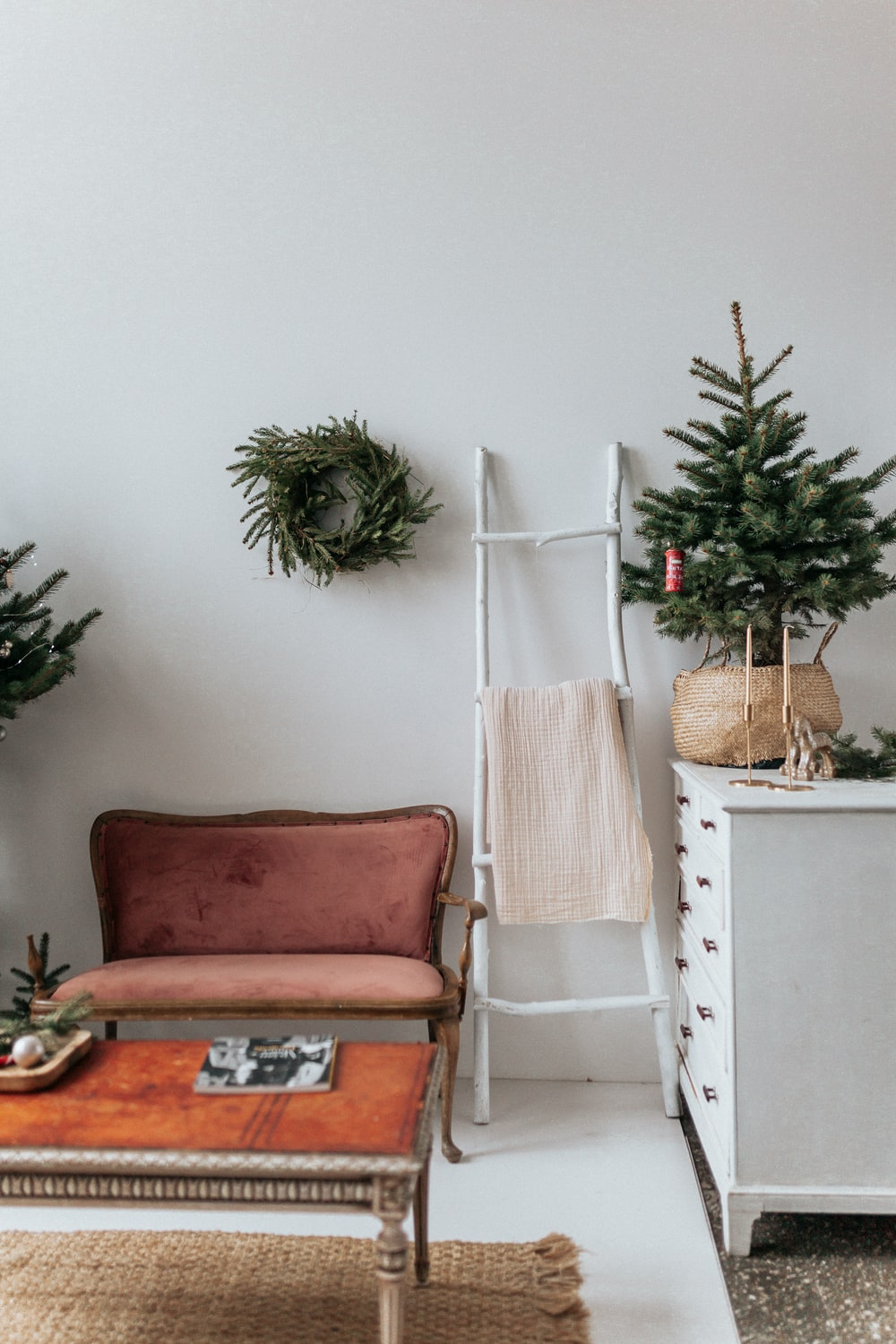 green pine tree on white wooden table