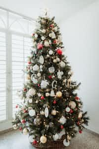 Bottom of The Christmas Tree coal stories