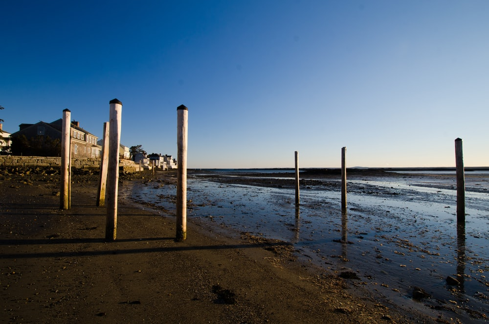 brown wooden poles on beach shore during daytime