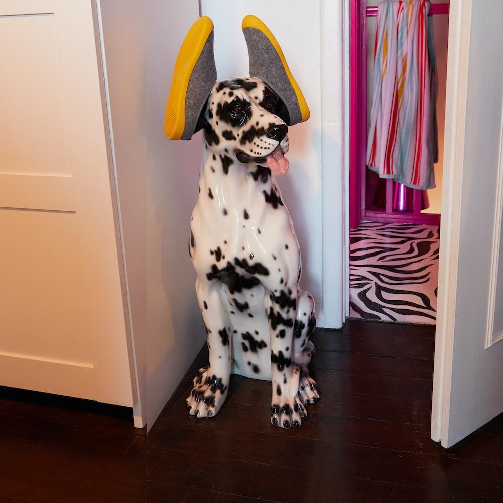 dalmatian dog sitting on floor