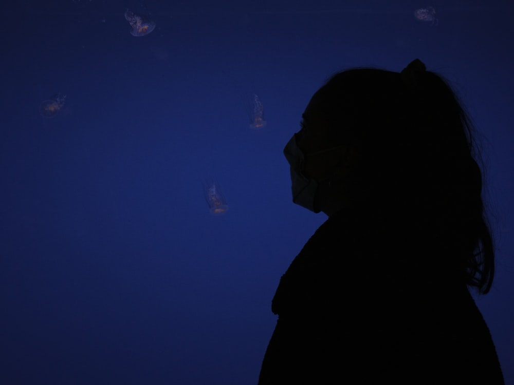 silhouette of man looking at blue and white lights