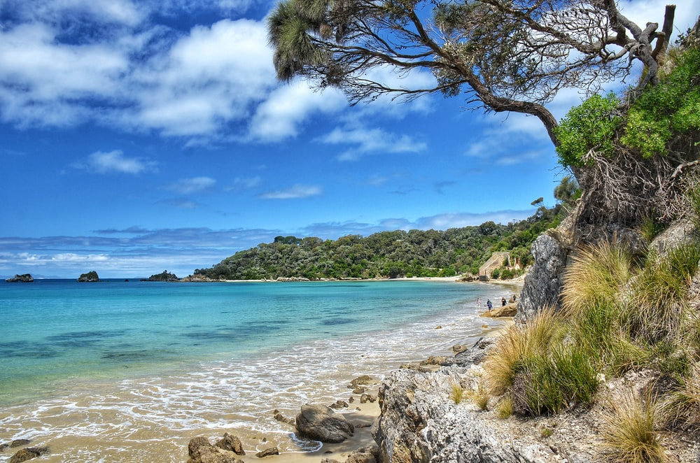 green trees on brown rocky shore near blue sea under blue and white cloudy sky during