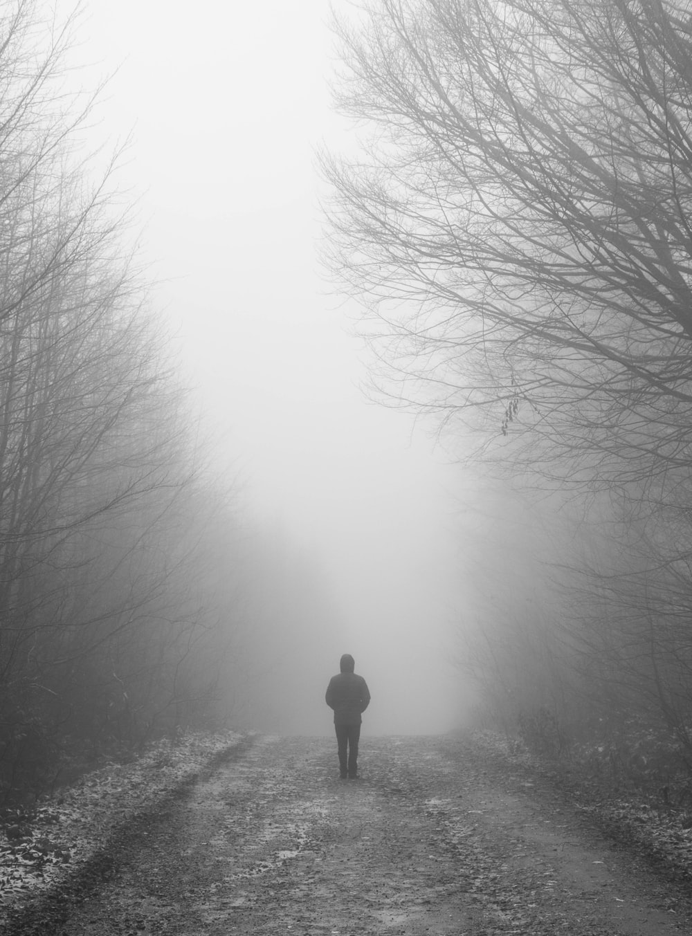 person in black jacket standing on foggy forest