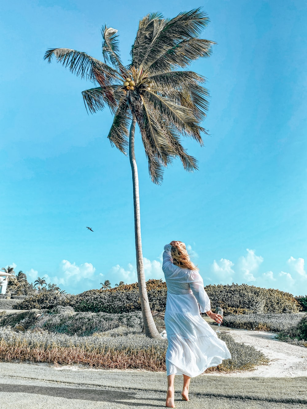 woman in white dress standing near palm tree during daytime