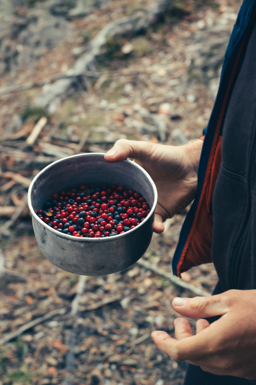 person holding stainless steel cup with red round fruits