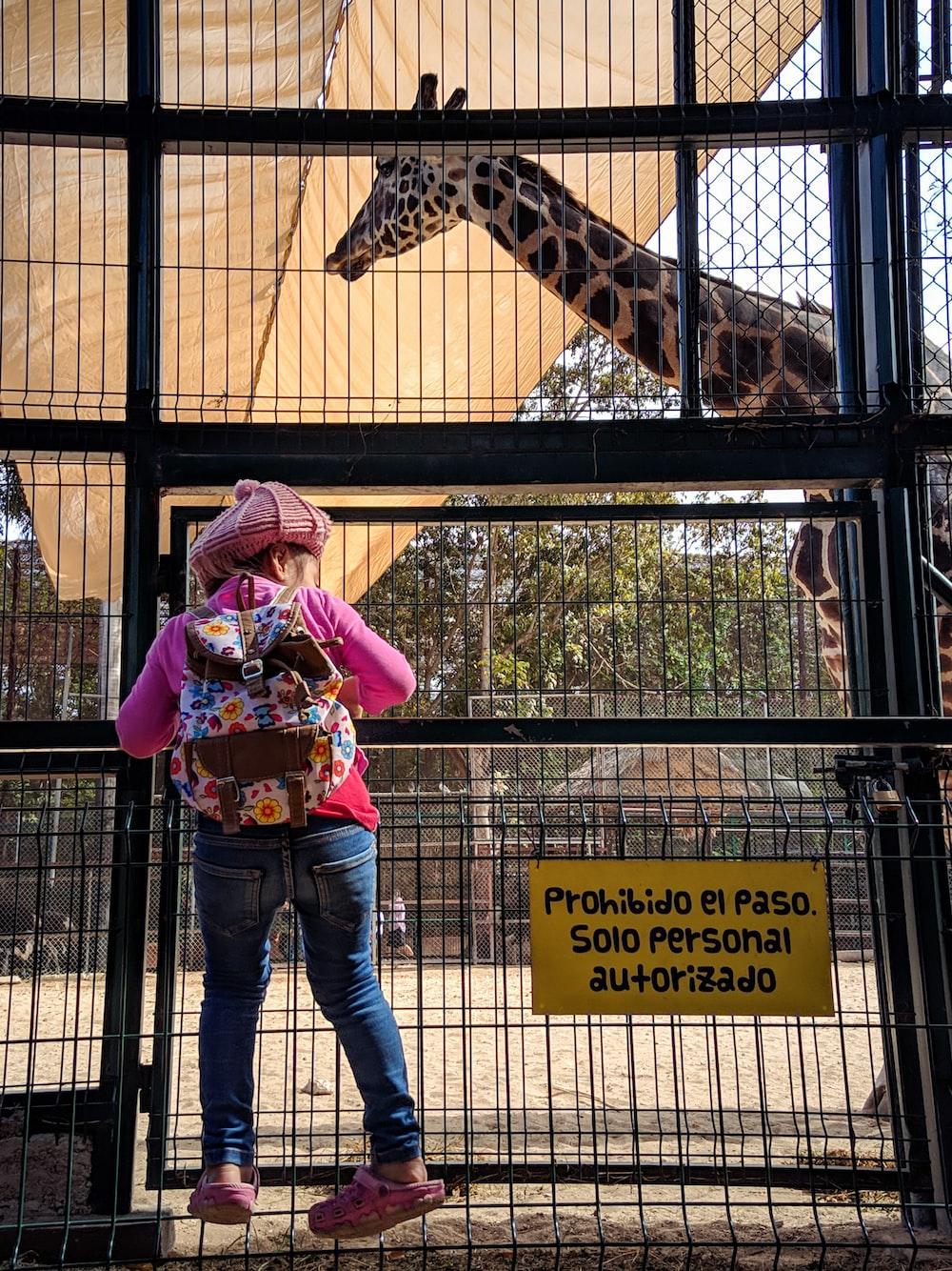 girl in pink shirt and blue denim jeans standing beside giraffe