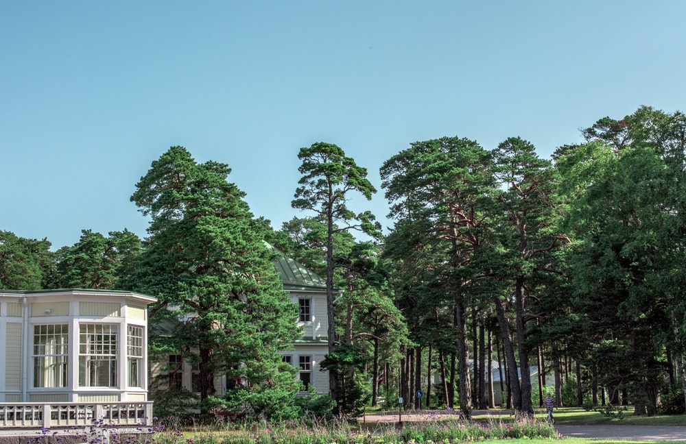 white and brown house surrounded by green trees under blue sky during daytime