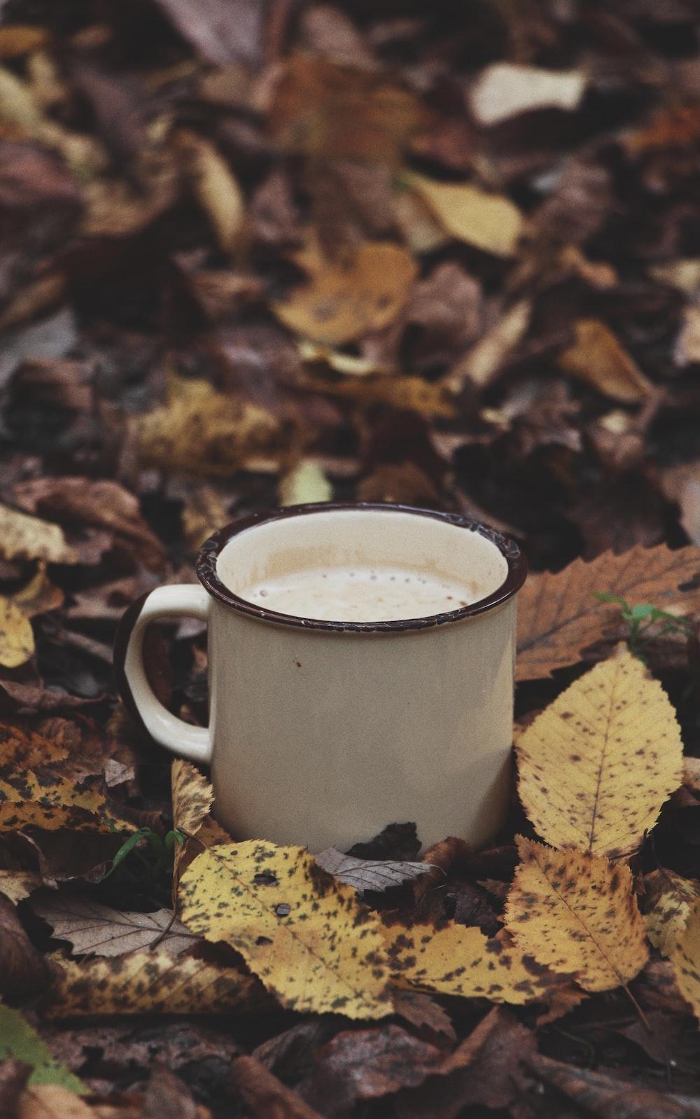 white ceramic mug on dried leaves