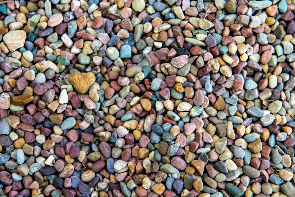 brown and gray pebbles on ground