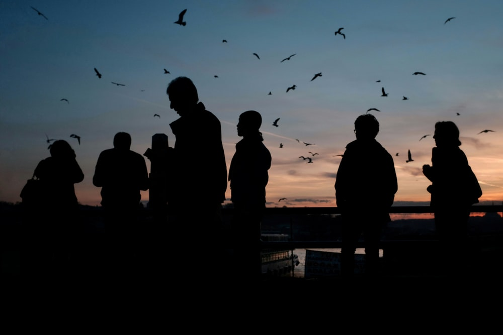 silhouette of people standing on dock during daytime