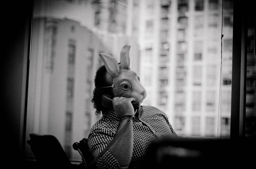 grayscale photo of rabbit plush toy