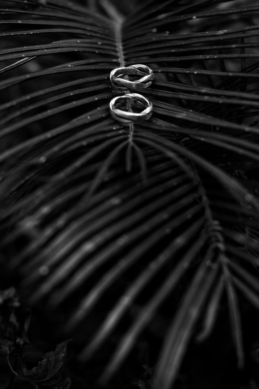 silver ring on green leaf