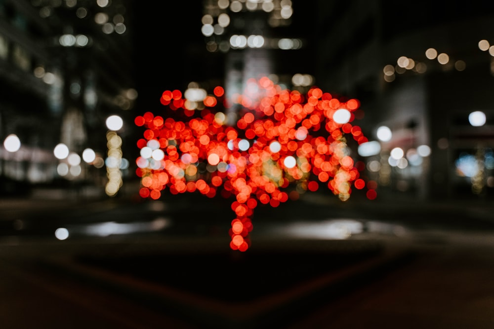 red and white lights on road during night time