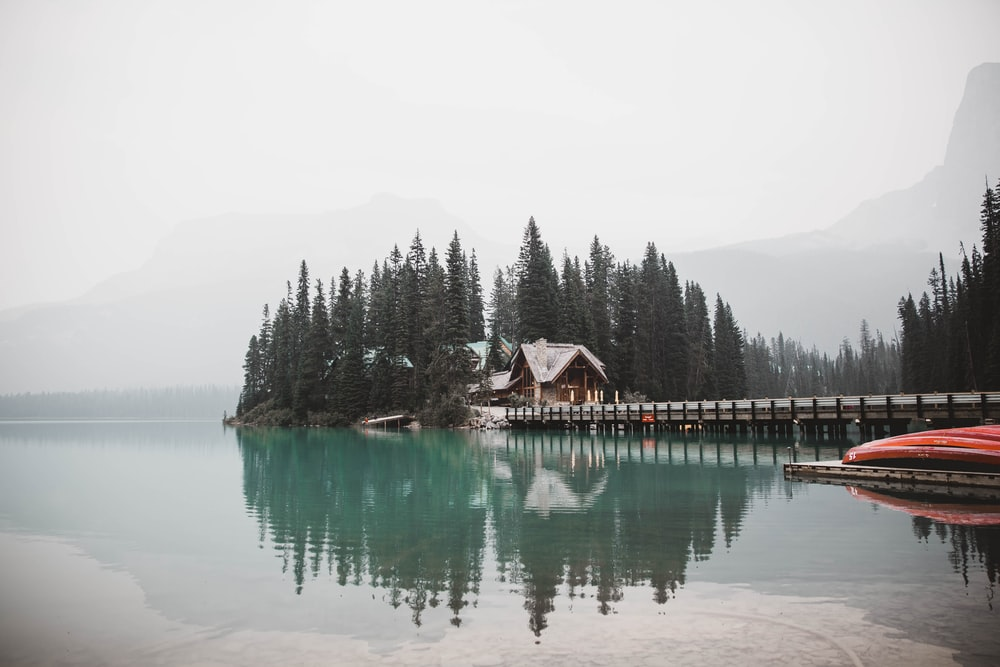 brown wooden house on lake near green trees during daytime