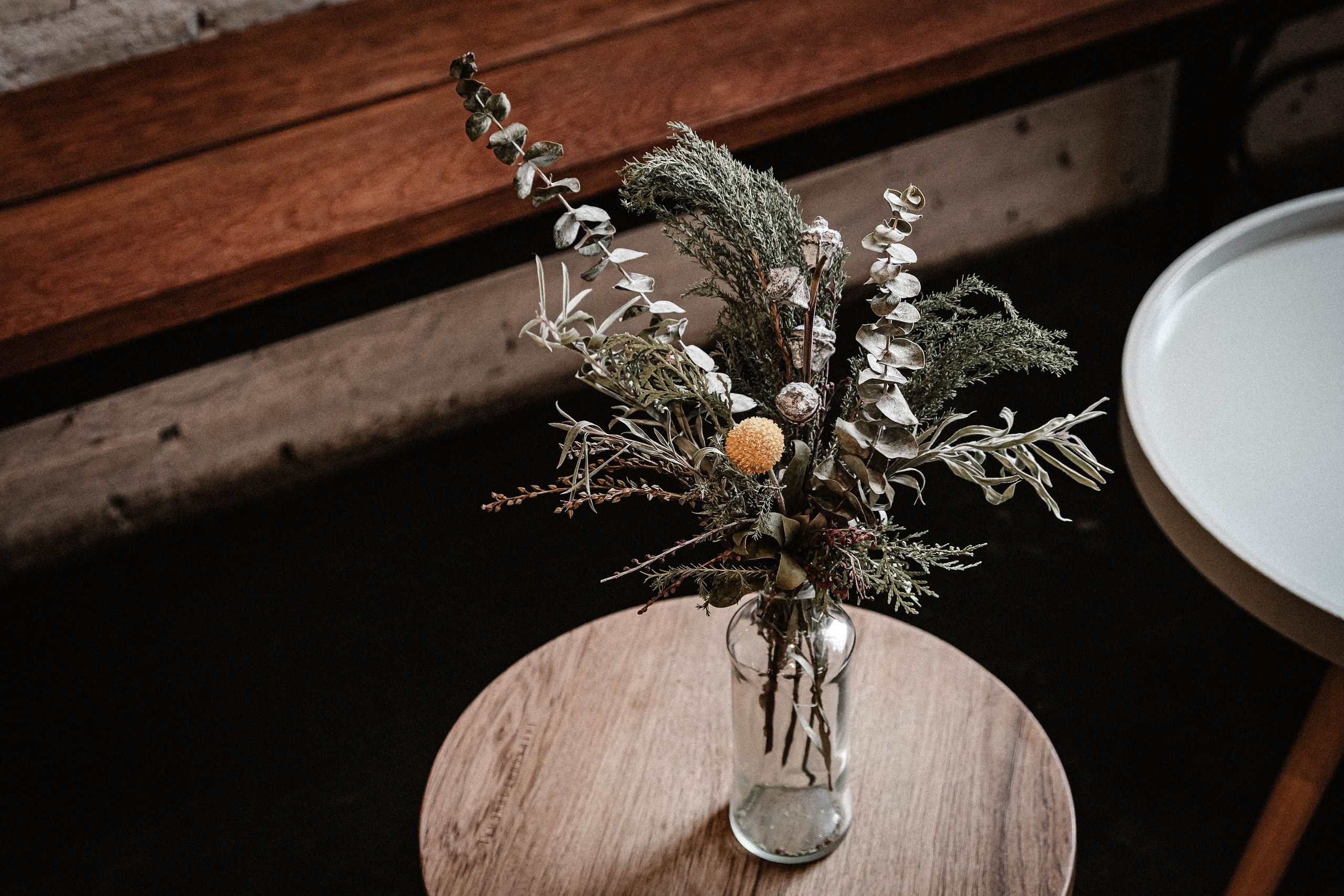 brown and green plant on brown wooden table