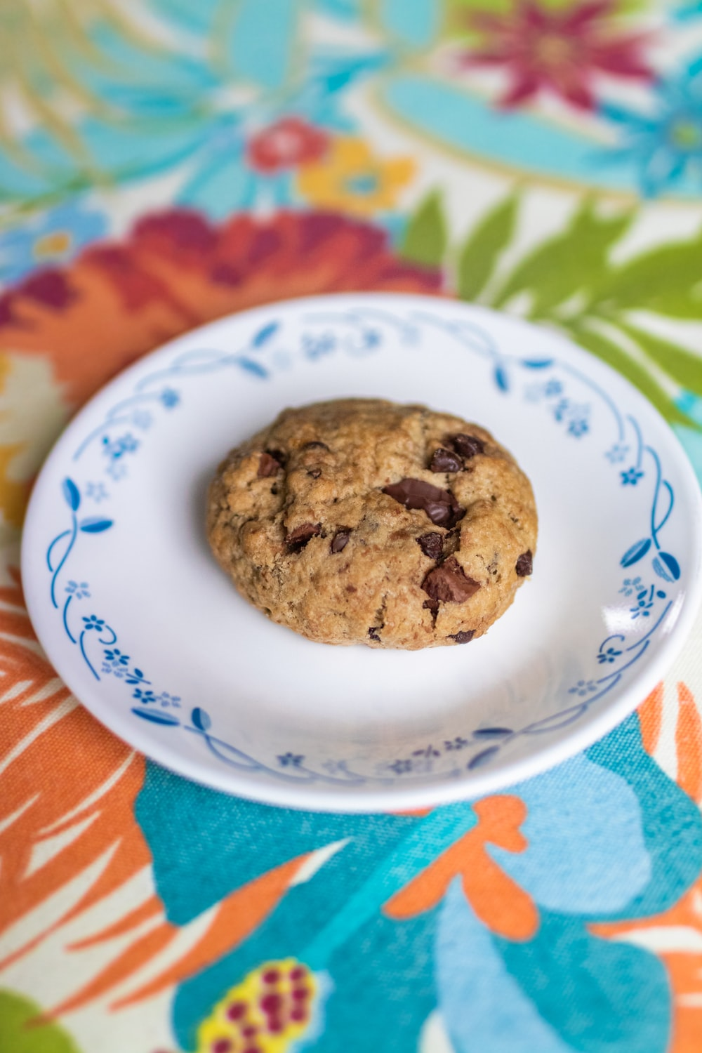 brown cookies on white and blue ceramic plate