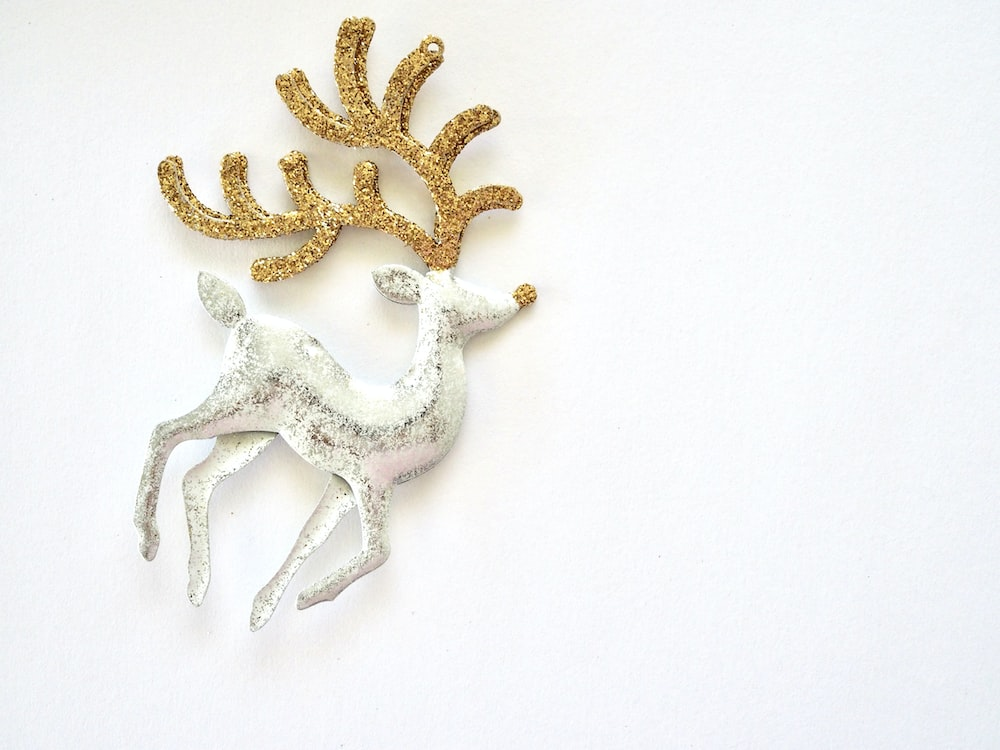 gold and white starfish on white surface