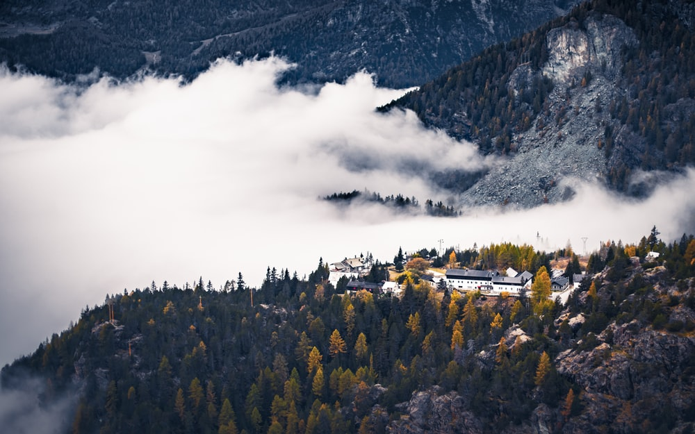 green trees near mountain under white clouds during daytime