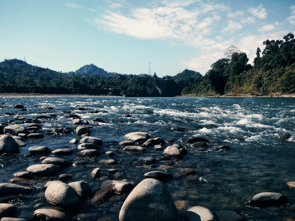 rocky river with rocks and trees under blue sky during daytime