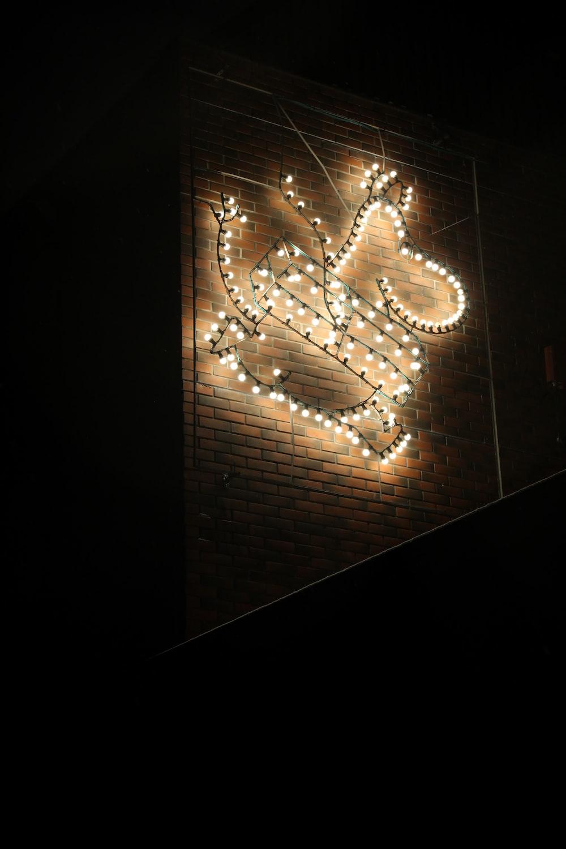gold string lights on black surface