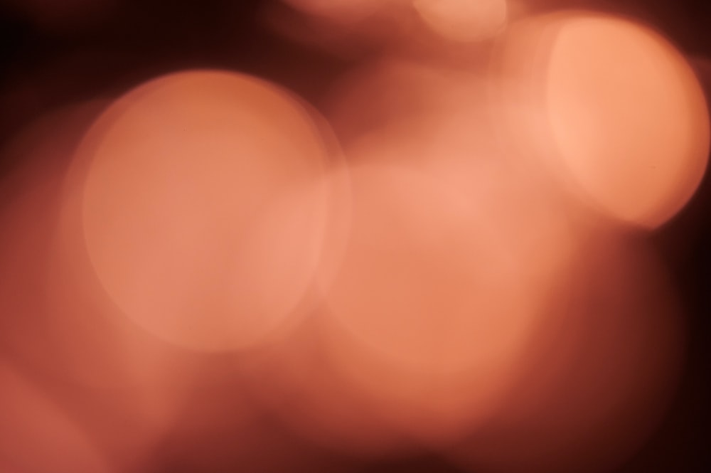 orange and white bokeh lights