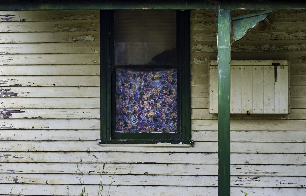 blue red and green floral window