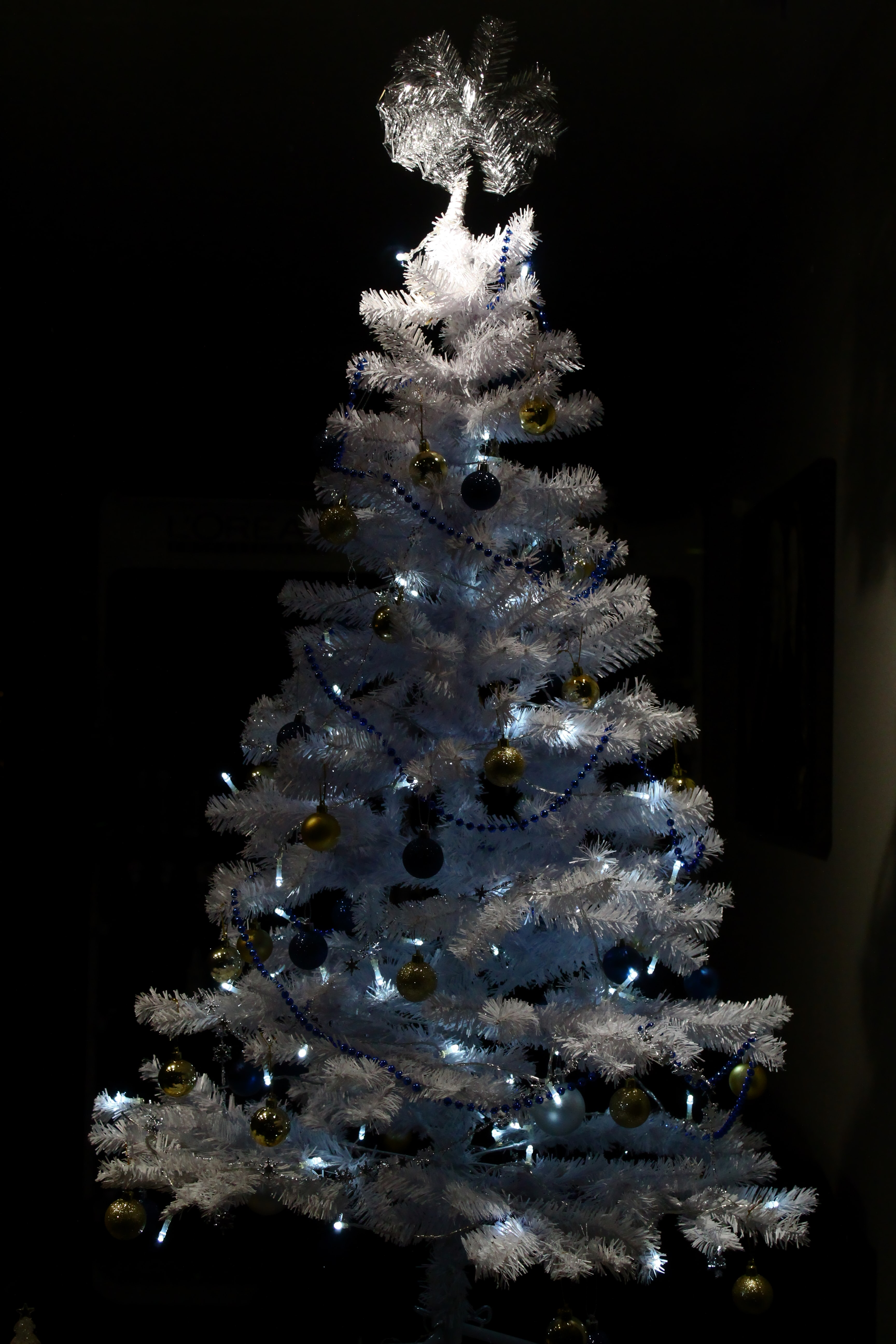 White And Blue Christmas Tree Photo Free Image On Unsplash