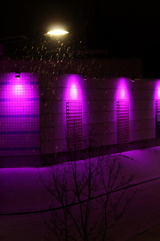 purple light on a dark room