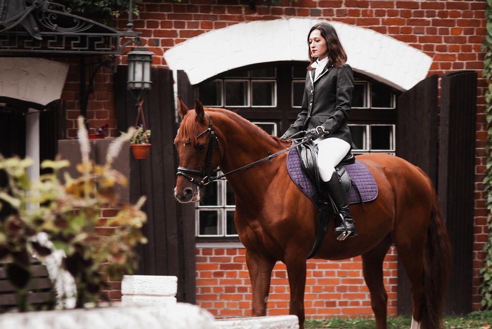 woman in black jacket riding brown horse during daytime